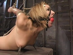 S&m photograph in blond Jolene getting glutton fastened and toyed