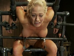 Curvaceous Holly Heart acquires her teats tormented